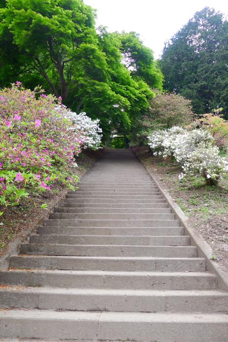 宝登山神社奥宮へ向かう階段