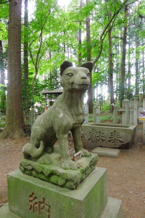 宝登山神社奥宮のオオカミの姿の狛犬