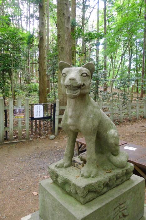 宝登山神社奥宮のオオカミの姿をした狛犬