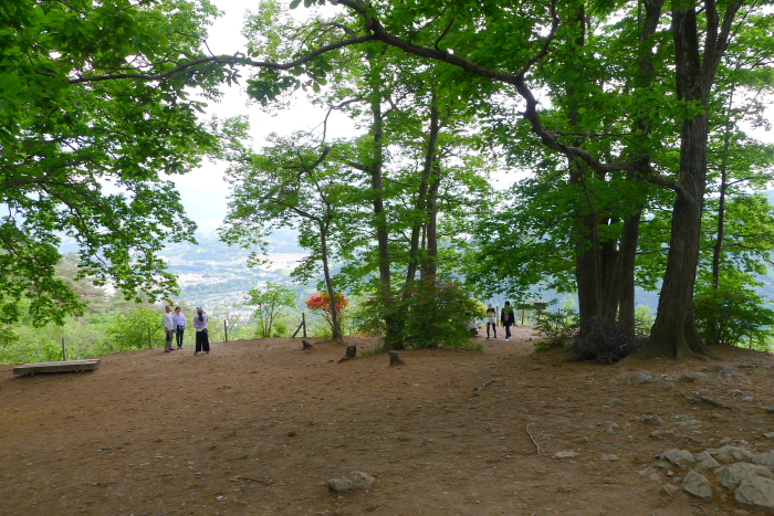 宝登山山頂の広場