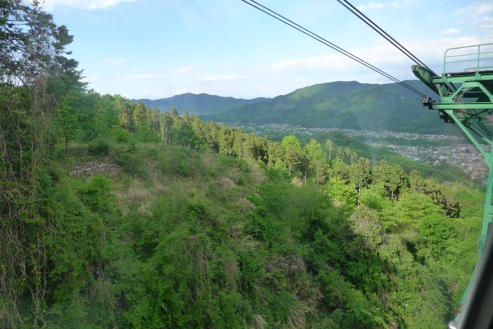 宝登山ロープウェイから見た景色