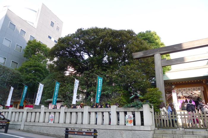 東京大神宮の休日の混雑ぶり