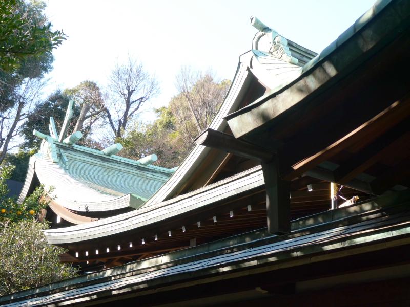 港区_白金氷川神社の社殿を横から見上げる