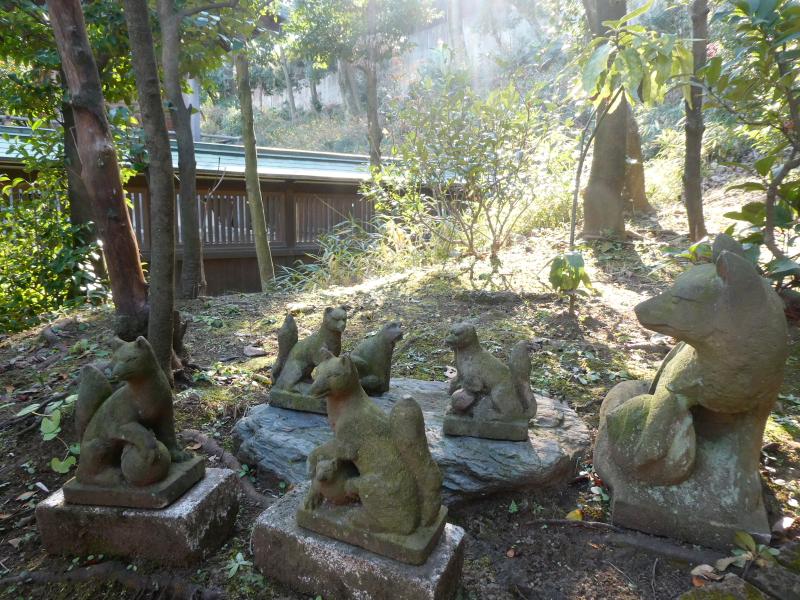港区_白金氷川神社の境内社「衣食住の守護の神様」の近くにはたくさんのお稲荷さんがいます